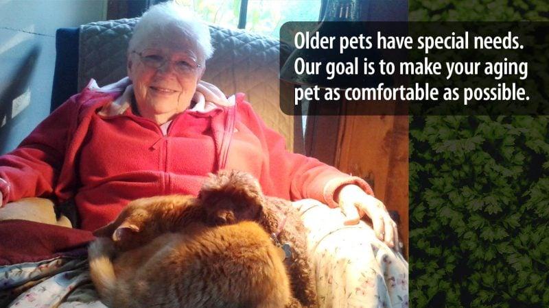 Geriatric Pet Care